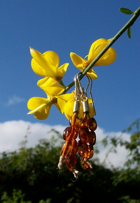 Amber Silver Earrings ER109