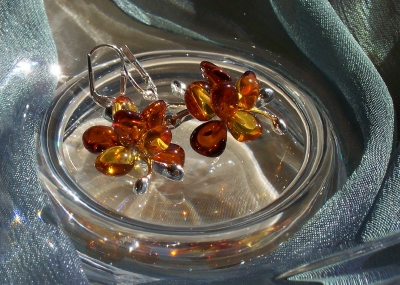Amber Silver Earrings ER2019
