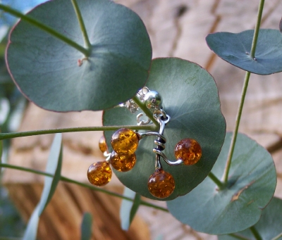 Amber Silver Earrings to stick ES1024