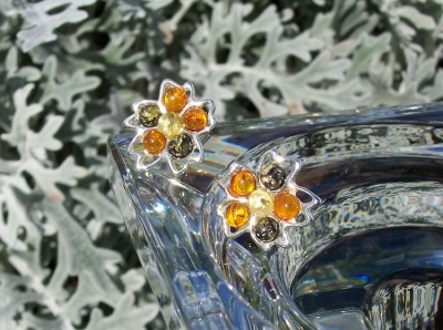 Amber Silver Earrings to stick ES1043