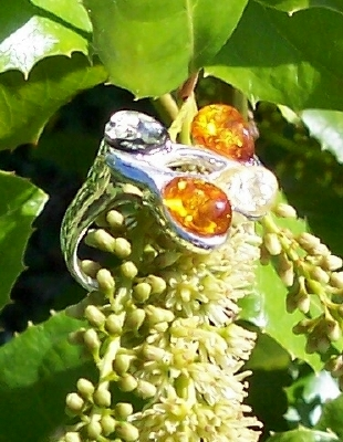 Amber Silver Ring RG1016
