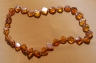 Amber Necklaces ANECK05