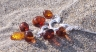 Amber Necklaces NE2069